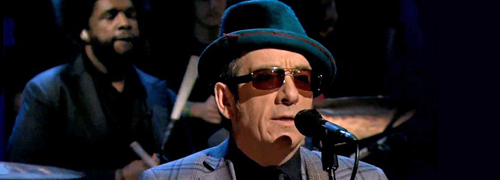 Elvis Costello Roots
